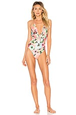 Privacy Please Elouise One Piece in Gina Floral