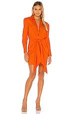 Petersyn Agnes Dress in Orange