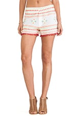 Raga Embroidered Shorts in Multi