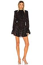ROCOCO SAND Diva Dress in Black