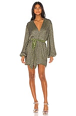 retrofete Gabrielle Robe Dress in Army Green