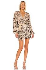 retrofete Gabrielle Robe Dress in Nude Leopard