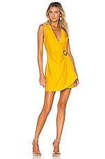 Ronny Kobo Lorenza Dress in Pineapple