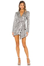 Ronny Kobo Jerry Dress in Silver