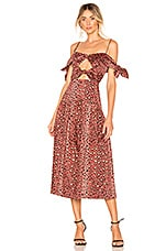 Rebecca Taylor Leopard Bow Dress in Henna