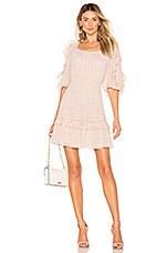 Rebecca Taylor Block Vine Dress in Cream Combo