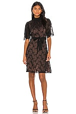 Rebecca Taylor Short Sleeve Vine Embroidery Dress in Black Combo