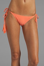Pongam Bottom in Coral