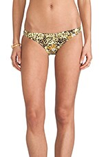 Punda Bottom in Lime Light Print