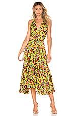 SALONI Rita Dress in Yellow Gardenia