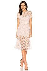 SAYLOR Lillie Dress in Ivory & Blush