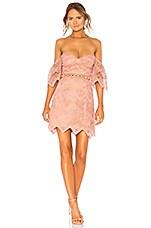 SAYLOR Annika Dress in Rose