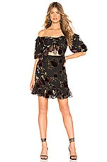 SAYLOR Devyn Dress in Black Floral