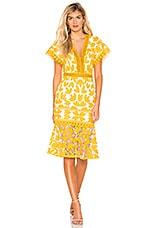 SAYLOR Kaiya Dress in Mustard & White