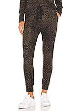 SUNDRY Leopard Print Pocket Jogger in Charcoal