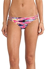 Tribe Hipster Bottom in Vibe