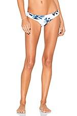 Tropic Coast Brazilian Bikini Bottom in White