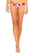 Stone Fox Swim Malibu Bikini Bottom in Sunrise Poppy