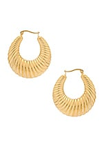 SHASHI Sadie Hoops in Gold