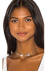 SHASHI Gina Shell Choker in Turquoise