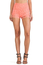 Sienna Lace Short in Coral