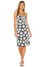 Solid & Striped Lolita Dress in Graphic Daisy