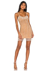 Song of Style Leighton Mini Dress in Golden Pearl