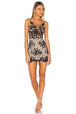 superdown Charlize Lace Mini Dress in Black & Nude