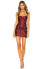 superdown Natasia Bustier Mini Dress in Red Leopard