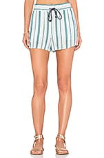 Beachcomber Stripe Short en Vert Antique & Verre Bleu