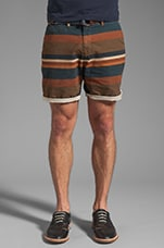 Patterned Stripe Short in Brown