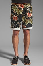 Belted Chino Short in Hawaiian
