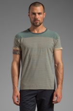 Stripe Tee in Blue/Brown