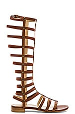 Gladiator Sandal in Saddle