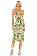 Sun Becomes Her Villa Midi Dress in Palm Heaven