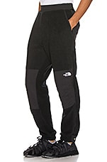 The North Face 95 Retro Denali Pant in TNF Black