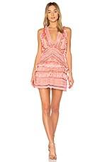 THURLEY Foxtrot Dress in Flamingo