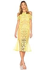 THURLEY Enchanted Garden Midi Dress in Zest
