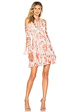 THURLEY Chintz Print Dress in Coral Multi