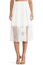 Tibi Sonoran Eyelet Skirt in Ivory Multi