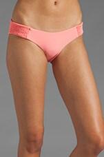 Daisy Bikini Bottom in Guava