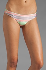 Kalani Bottom in Indian Wells Guava