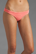 Lily Bikini Bottom in Guava