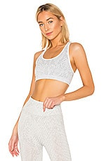 Morgan Stewart Sport Gopher Sports Bra in Glacier & White