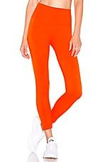 TLA by Morgan Stewart Roy Legging in Popsicle Orange