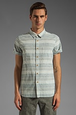 Wellinton Button Up in Blue Stripe