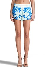 Rio Shorts in Blue Jay