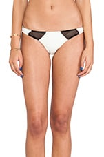 Bruce Mesh Bottom in Cream & Black