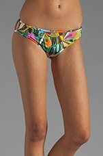 Rex Ray Collaboration Boyshort Hipster in Multi
