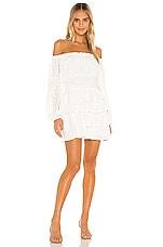 Tularosa Newberry Dress in White